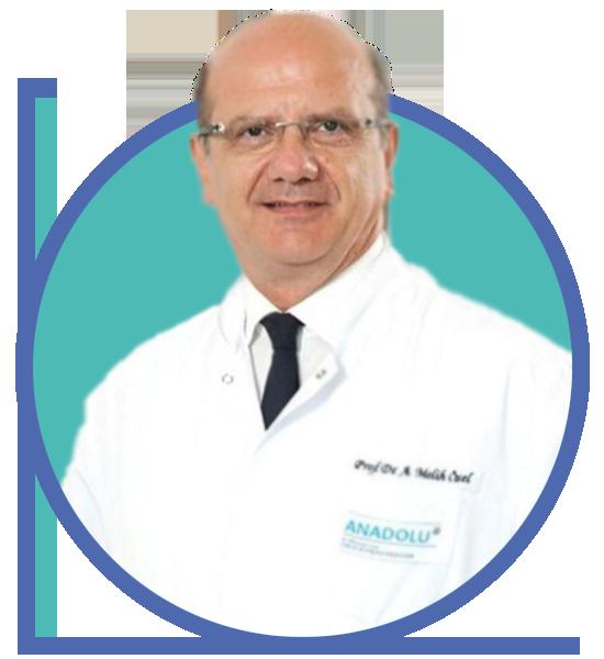 Prof. Dr. A. Melih Özel